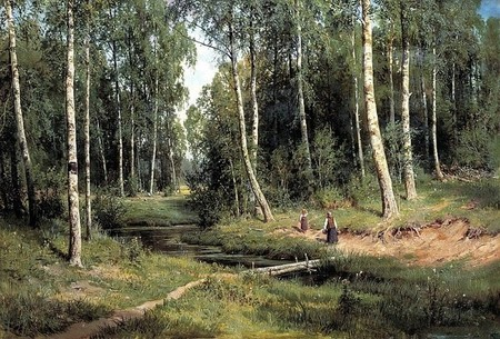 Brook in a Birch Forest