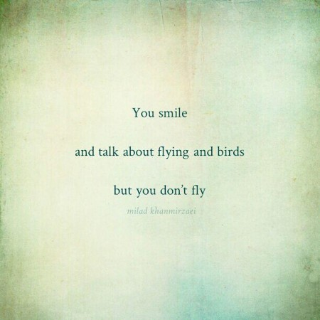 You smile and talk about flying and birds but you don't fly // Milad Khanmirzaei, 2015